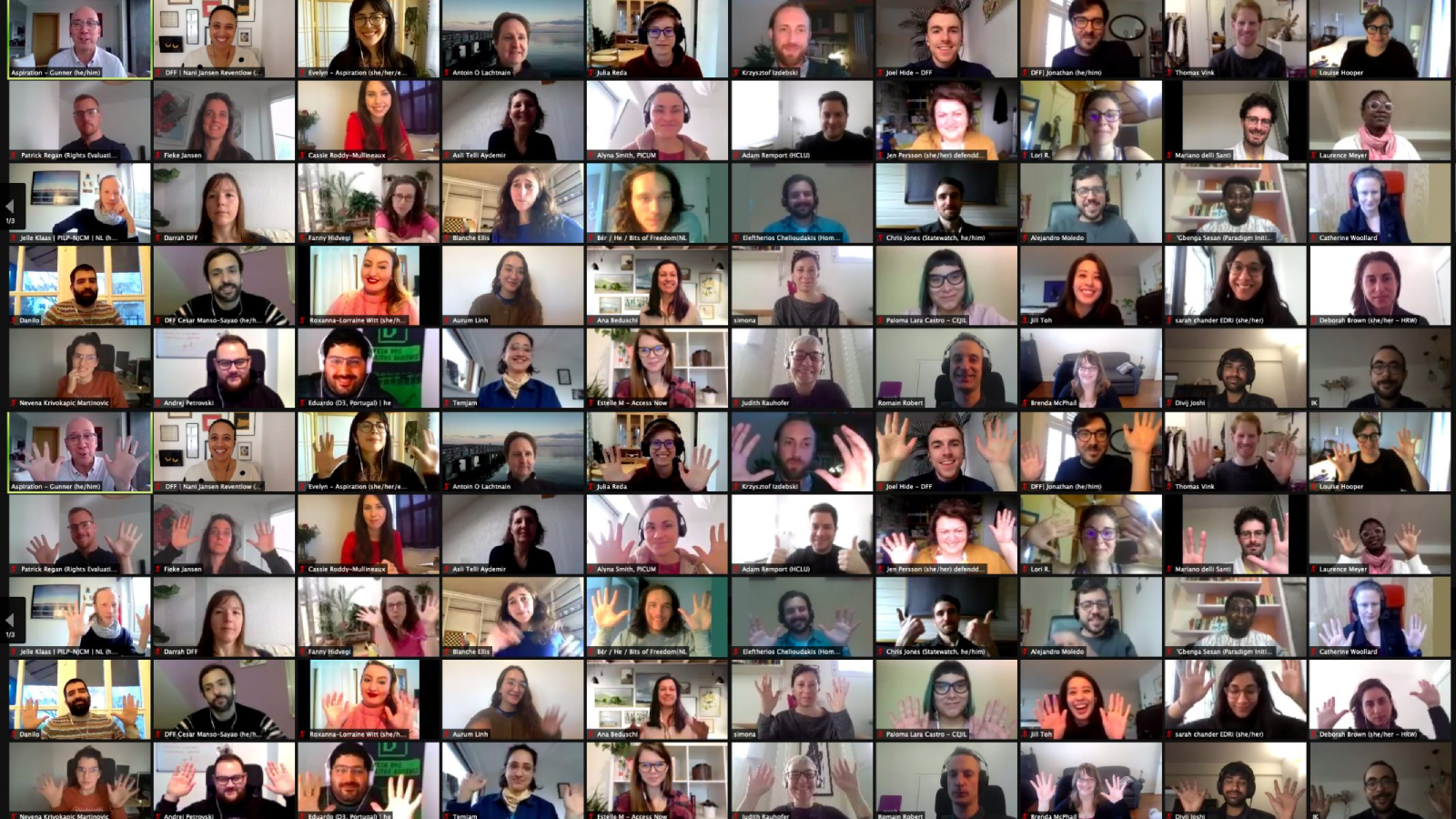 Screenshot from DFF's annual strategy meeting, featuring participants on Zoom